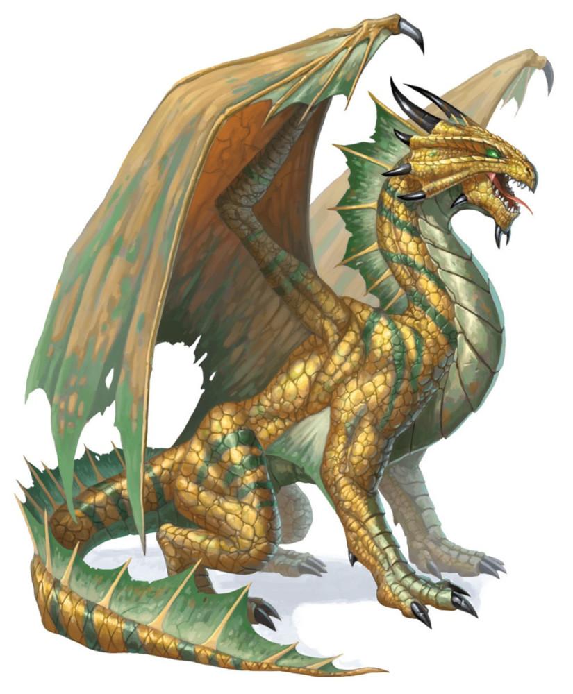 Dragon de bronze, adulte