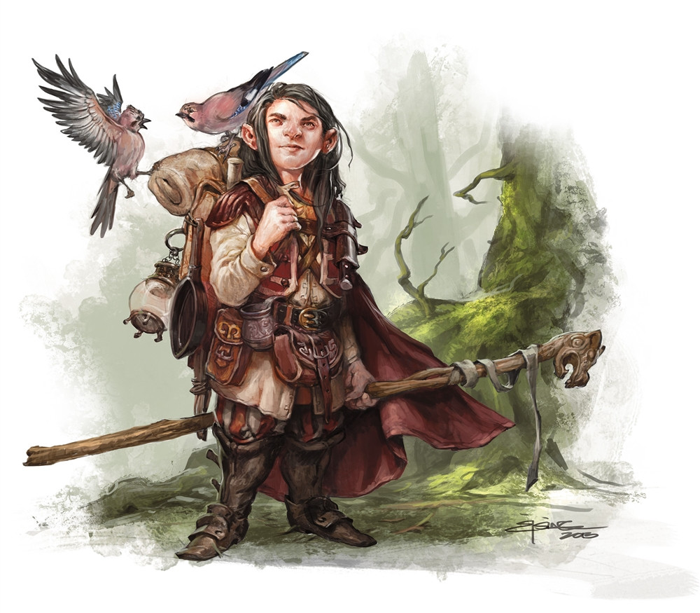 Dnd   Pathfinder Druid Build
